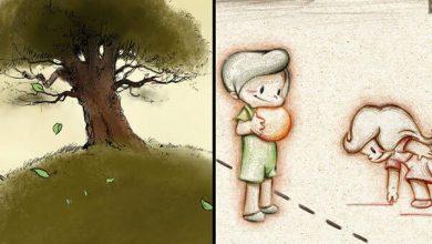 Photo of جشنواره گلدن کولر میزبان دو انیمیشن از ایران