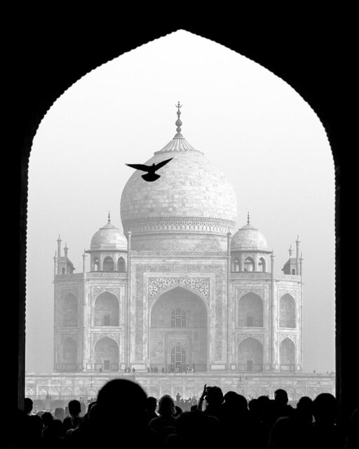 برترینهای عکاس تاریخی سال 2020 لینک : https://asarartmagazine.ir/?p=21776 👇 سایت : AsarArtMagazine.ir اینستاگرام : instagram.com/AsarArtMagazine تلگرام : t.me/AsarArtMagazine 👆