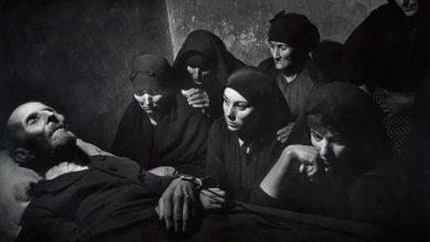 Photo of پیکتوریالیسم در عکاسی