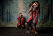 Photo of برندگان عکاس سال حیات وحش اروپا ۲۰۲۰
