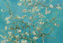 ونگوگ و «شکوفه بادام» لینک : https://asarartmagazine.ir/?p=22052 👇 سایت : AsarArtMagazine.ir اینستاگرام : instagram.com/AsarArtMagazine تلگرام : t.me/AsarArtMagazine 👆