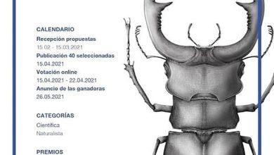 مسابقه بینالمللی Illustraciència 2021 فراخوان داد لینک : https://asarartmagazine.ir/?p=22680 سایت : AsarArtMagazine.ir اینستاگرام : instagram.com/AsarArtMagazine تلگرام : t.me/AsarArtMagazine 👆
