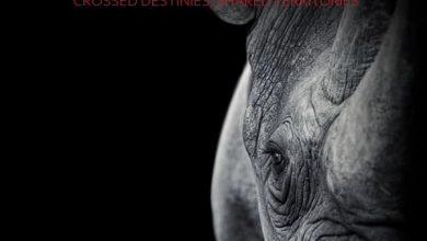 فراخوان مسابقه عکاسی Environmental 2021 لینک : https://asarartmagazine.ir/?p=23437👇 سایت : AsarArtMagazine.ir اینستاگرام : instagram.com/AsarArtMagazine تلگرام : t.me/AsarArtMagazine 👆